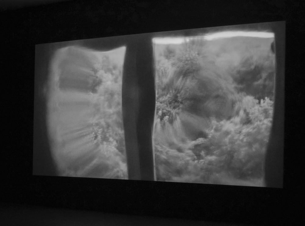Vicky Langan and Maximilian Le Cain: Inside (2017). Still. Digital film, 70 mins. Installation view, TULCA Festival of Visual Arts 2017. Image courtesy of the artist. Photo: Jonathan Sammon