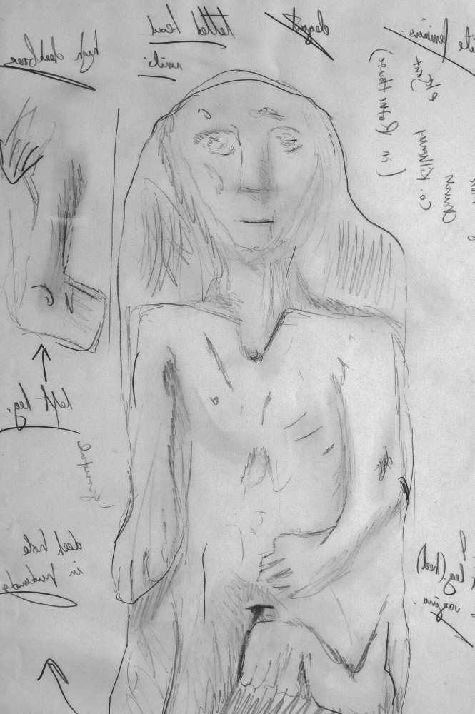 Sheela-n-Gig (Cooliagh More) housed in Rothe House, Kilkenny. Stone. Sketch. © Benjamin Dwyer