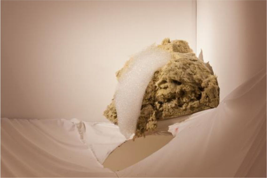 Lucy Andrews, The Law of Contagion, 2012, mixed media installation with rockwool insulation, washing up liquid, foot spa. © Project Arts Centre